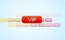 VIP图标